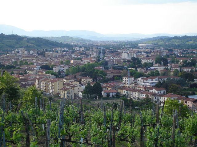 Il panorama della città di Montevarchi