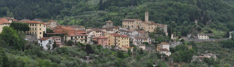 Il panorama del comune di Pelago