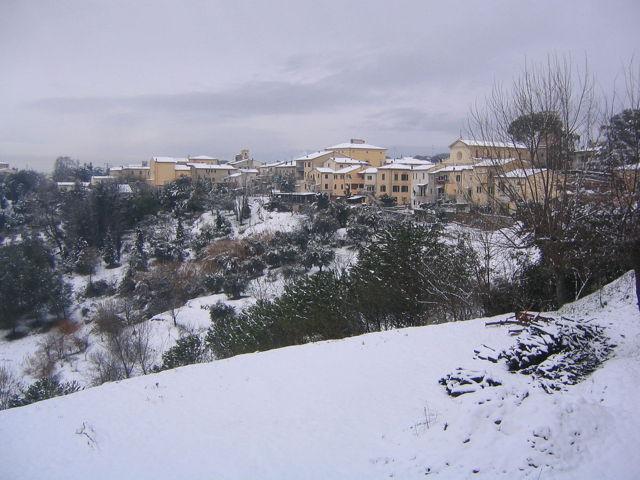 Un'immagine sotto la neve di Fauglia
