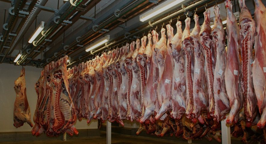 L'ozono nella lavorazione e nel trattamento della carne